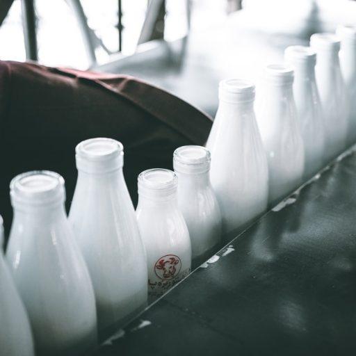 Verschillende-melkflessen