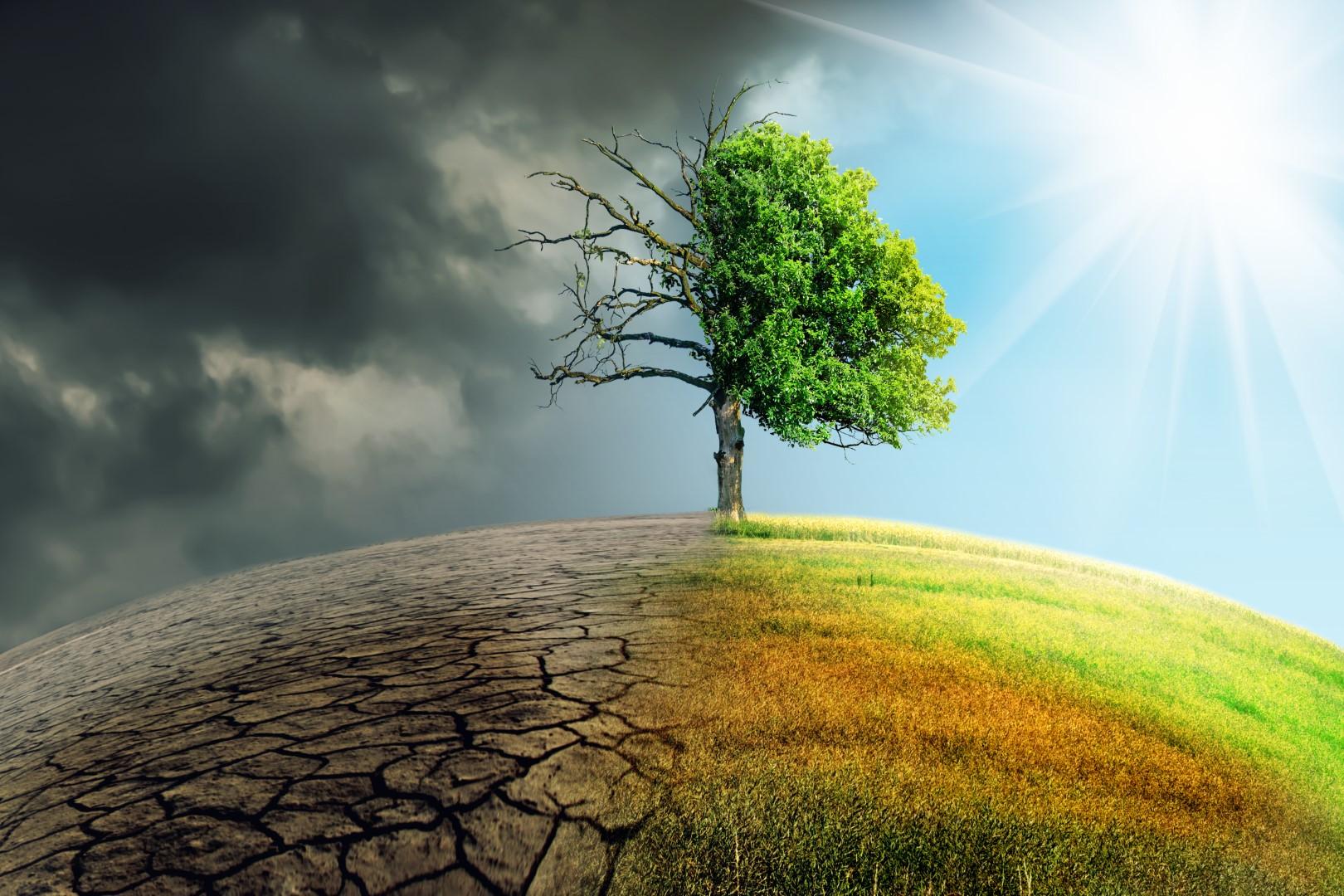 Allergieën en klimaatverandering